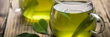 Le thé vert : Boisson minceur et détox numéro 1