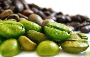extrait de grain de café vert